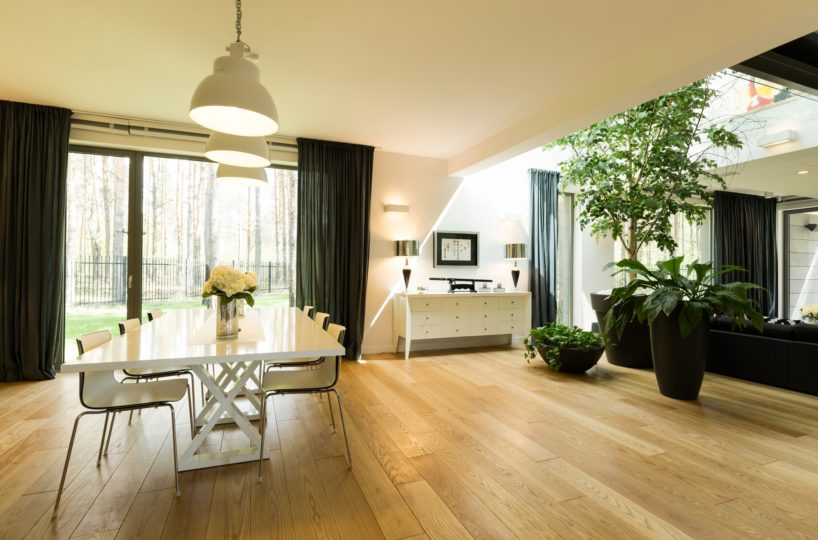 Spacious room with table and plants